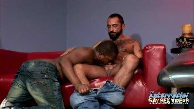 sexy ermafrodita porno