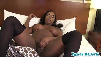Chubby black trans beauty twerks and jerks