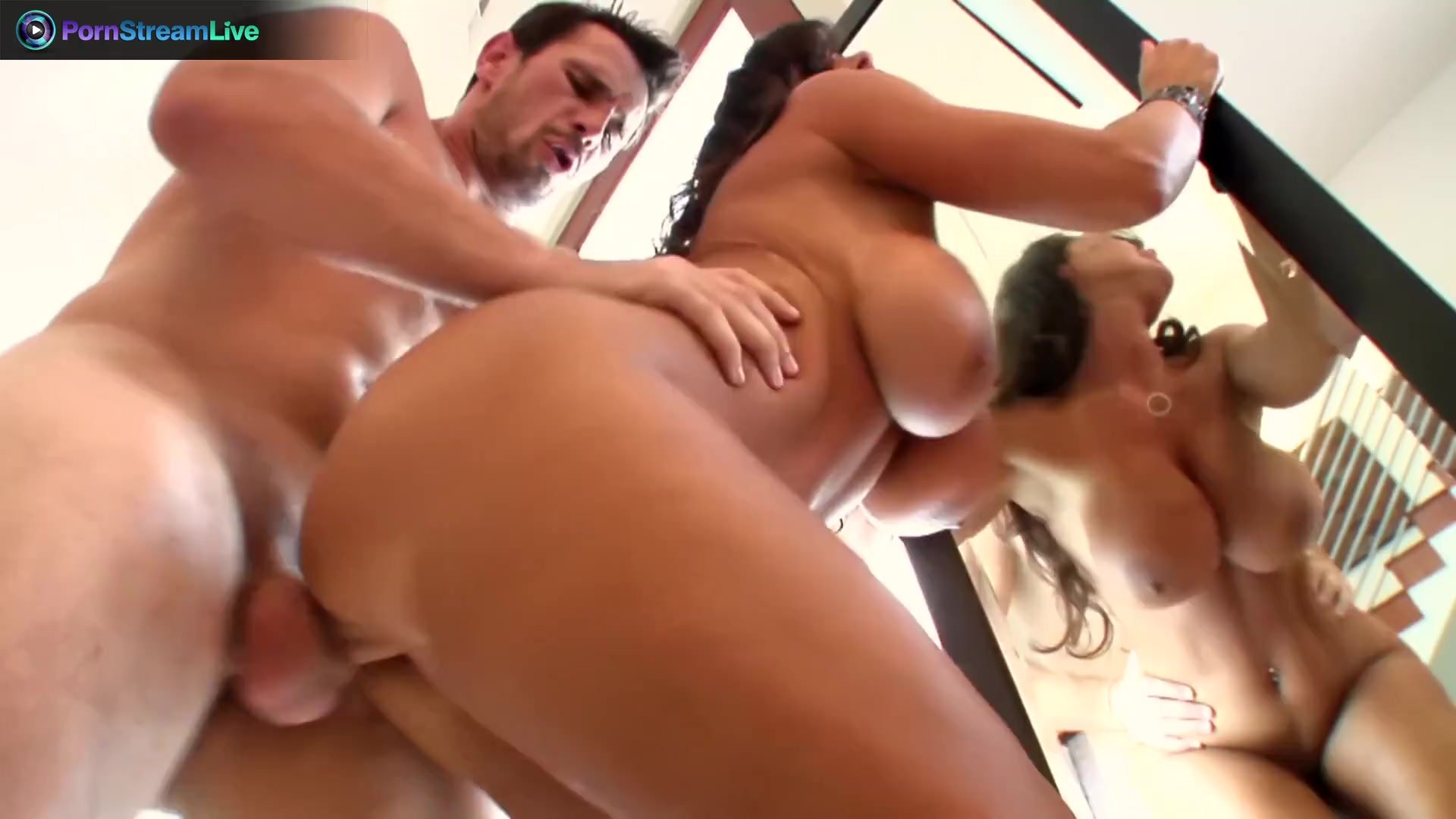 Lisa Ann wild sex with Manuel Ferrara