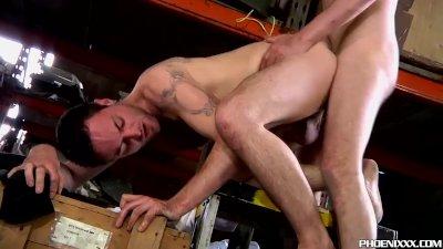 homo porno filme