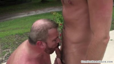 Chubby bear getting unsaddled outdoors