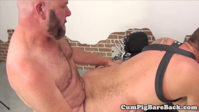 Mature bear getting his ass fucked